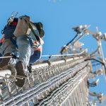 梯子からの墜落防止システム 使用事例2